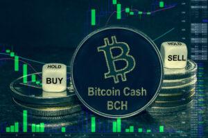 ビットコインキャッシュ(Bitcoin Cash/BCH)- 2021年1月22日|アルトコイン推奨銘柄レポート結果発表
